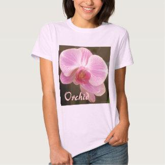Moda rosada de la orquídea playera
