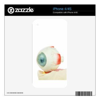 Model human eye isolated on white background.jpg iPhone 4 skin