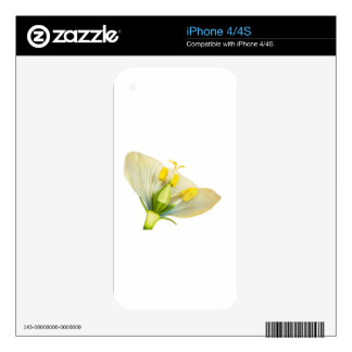 Model of flower with stamens and pistils on white decals for the iPhone 4S