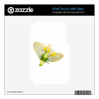 Model of flower with stamens and pistils on white iPod touch 4G skin