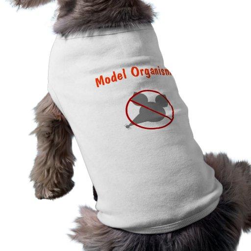 Model Organism Pet Clothes