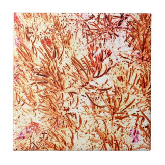 modelo abstracto anaranjado invertido del succulen azulejo cuadrado pequeño