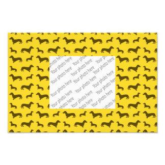 Modelo amarillo lindo del dachshund fotografía