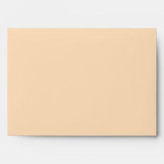 Modelo anaranjado en colores pastel del damasco sobres