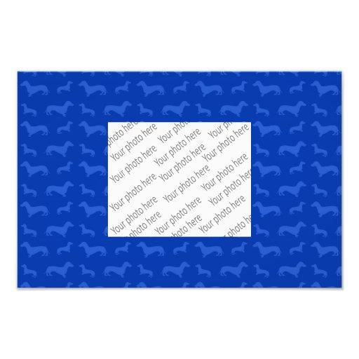 Modelo azul lindo del dachshund arte fotográfico