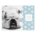 Modelo azul y blanco 1 de los copos de nieve con e postales