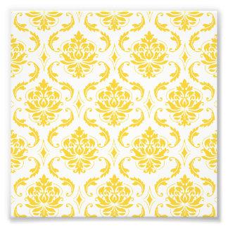 Modelo blanco amarillo femenino del damasco del fotografía