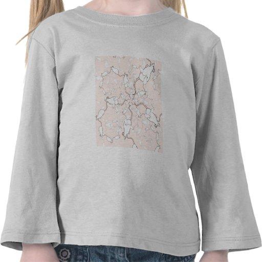 Modelo blanco lindo del ratón. Ratones en rosa Camisetas