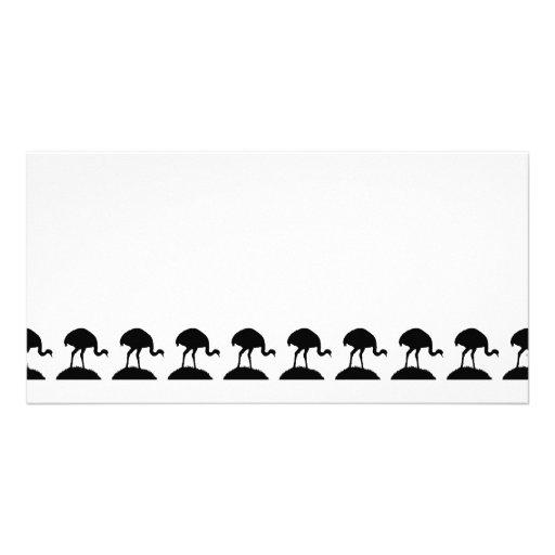 Modelo blanco y negro de los pájaros de Rhea Tarjetas Fotográficas Personalizadas