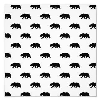 Modelo blanco y negro del oso grizzly fotografías