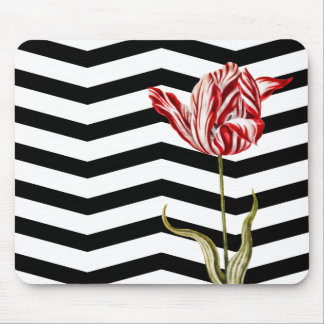 Modelo botánico de la raya de Chevron del tulipán Tapete De Raton
