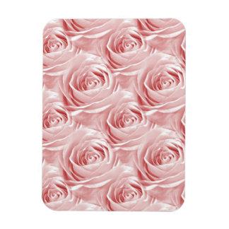 Modelo color de rosa rosado del papel pintado iman