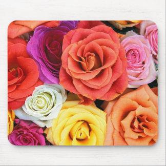 Modelo colorido de los rosas alfombrilla de ratón