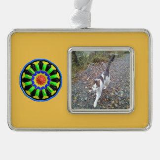 Modelo colorido del caleidoscopio del círculo adornos con foto