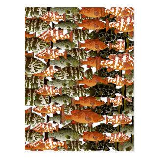 Modelo de 5 meros tarjetas postales