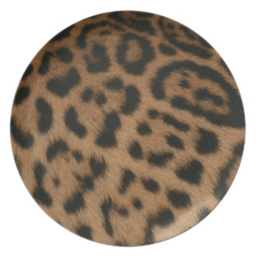 Modelo de Jaguar Platos