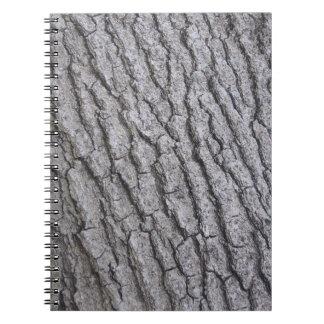 Modelo de la corteza de árbol libros de apuntes