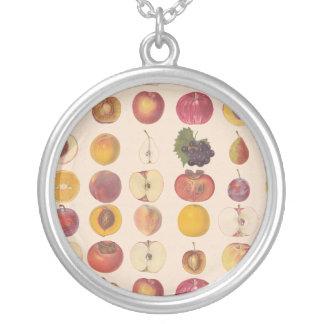 Modelo de la fruta del vintage colgante redondo