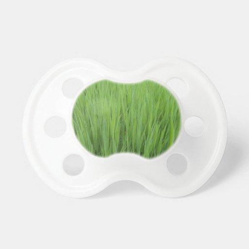 Modelo de la hierba verde chupete de bebé