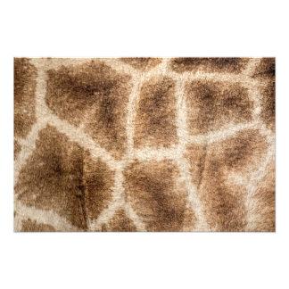 Modelo de la jirafa fotografía