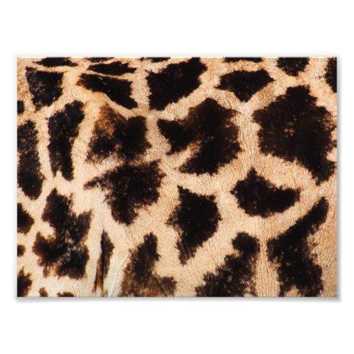 Modelo de la jirafa fotografias