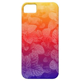 Modelo de la menta del arco iris de la puesta del  iPhone 5 Case-Mate protector