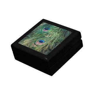 Modelo de la pluma del pavo real caja de joyas