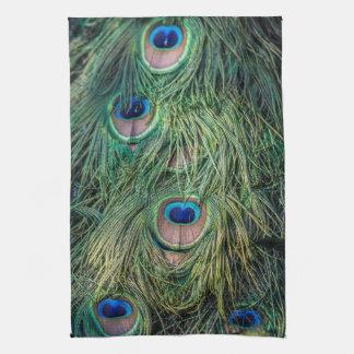 Modelo de la pluma del pavo real toalla de mano