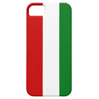 Modelo de la raya de los colores del navidad iPhone 5 Case-Mate protector