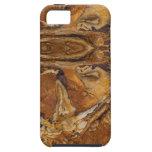 modelo de la roca de la piedra arenisca iPhone 5 protector