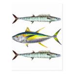 modelo de los pescados de la trucha salmonada y de tarjetas postales