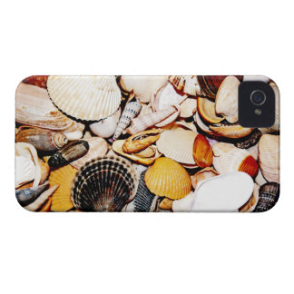 Modelo de los Seashells Carcasa Para iPhone 4 De Case-Mate