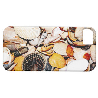 Modelo de los Seashells Funda Para iPhone SE/5/5s