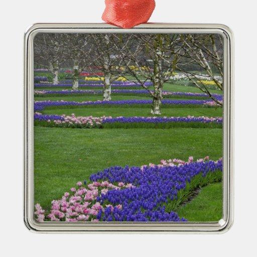 Modelo de los tulipanes y de las flores del jacint adornos de navidad
