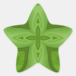 Modelo de madera verde abstracto pegatina en forma de estrella