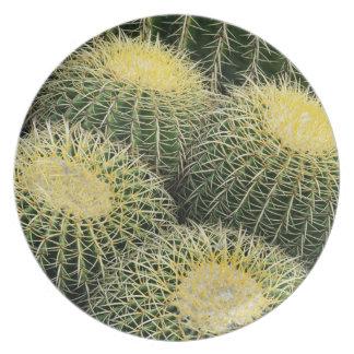 Modelo del cactus platos de comidas