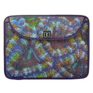 Modelo del coral de Acanthastrea Funda Para Macbook Pro