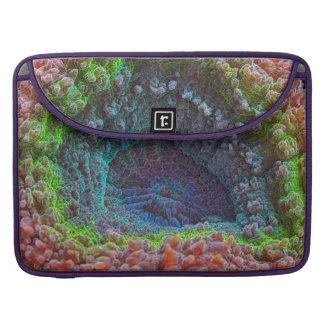 Modelo del coral de Lobophyllia del arco iris Funda Para Macbooks