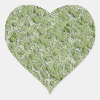 Modelo del efecto de las algas verdes pegatina en forma de corazón
