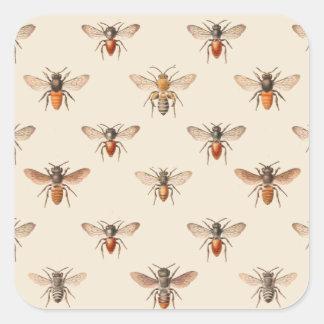 Modelo del ejemplo de la abeja del vintage pegatina cuadrada