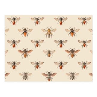 Modelo del ejemplo de la abeja del vintage postales