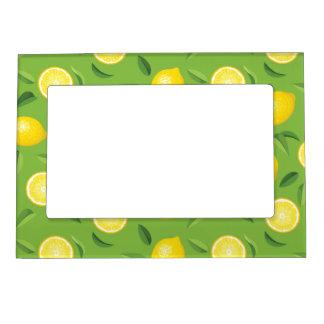 Modelo del fondo de los limones marcos magnéticos