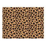 Modelo del guepardo postal