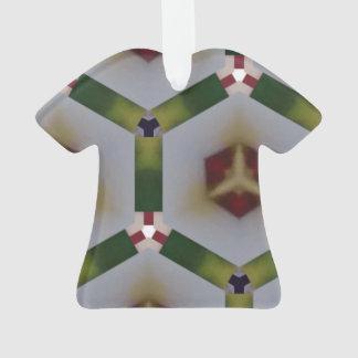 Modelo del hexágono