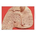 Modelo del hígado de una oveja tarjetón