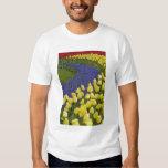 Modelo del jardín de las flores del jacinto de uva camisas