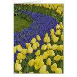 Modelo del jardín de las flores del jacinto de uva tarjeta de felicitación