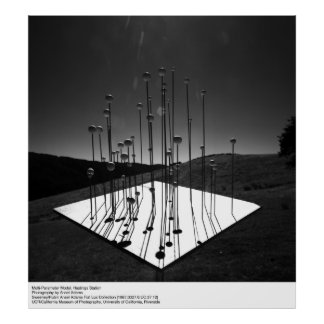 Modelo del multiparámetro, Hastings, por Ansel Ada Posters