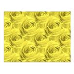 Modelo del papel pintado del rosa amarillo postal