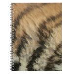 Modelo del tigre libros de apuntes